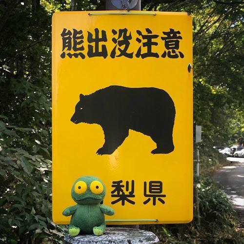 ゆうブログケロブログ弾丸山梨2017秋 (6)