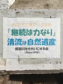 fuchinomori13.jpg