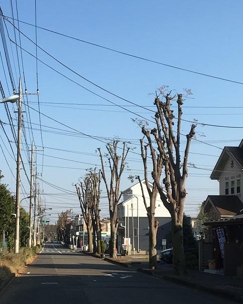 ichifuku17.jpg
