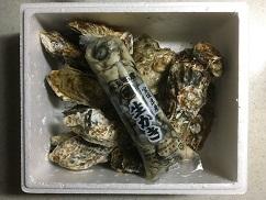 oyster171208.jpg