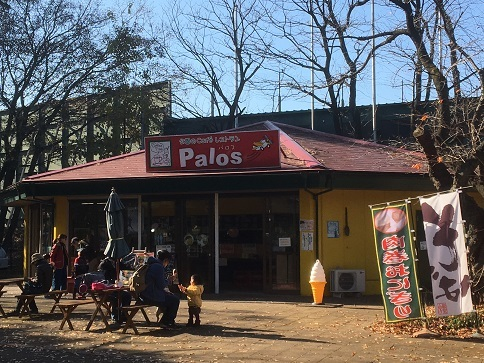 palos26.jpg