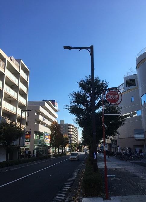 shino11.jpg