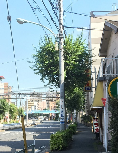 suzukisyokudo16.jpg