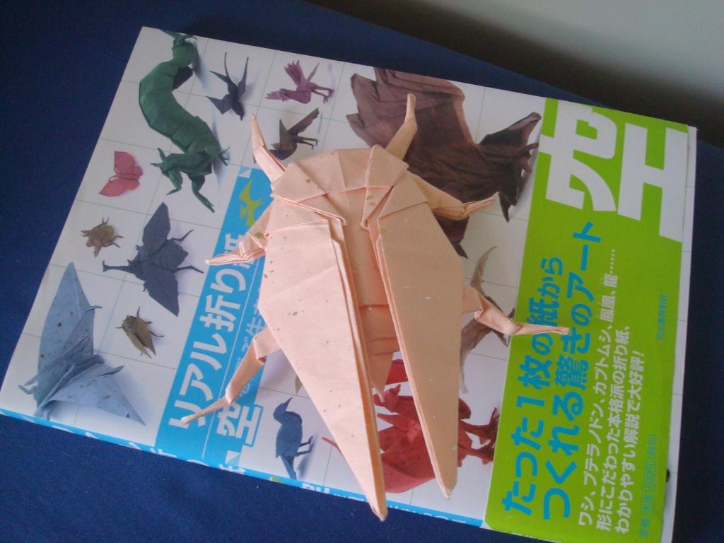 Origami-50.jpg