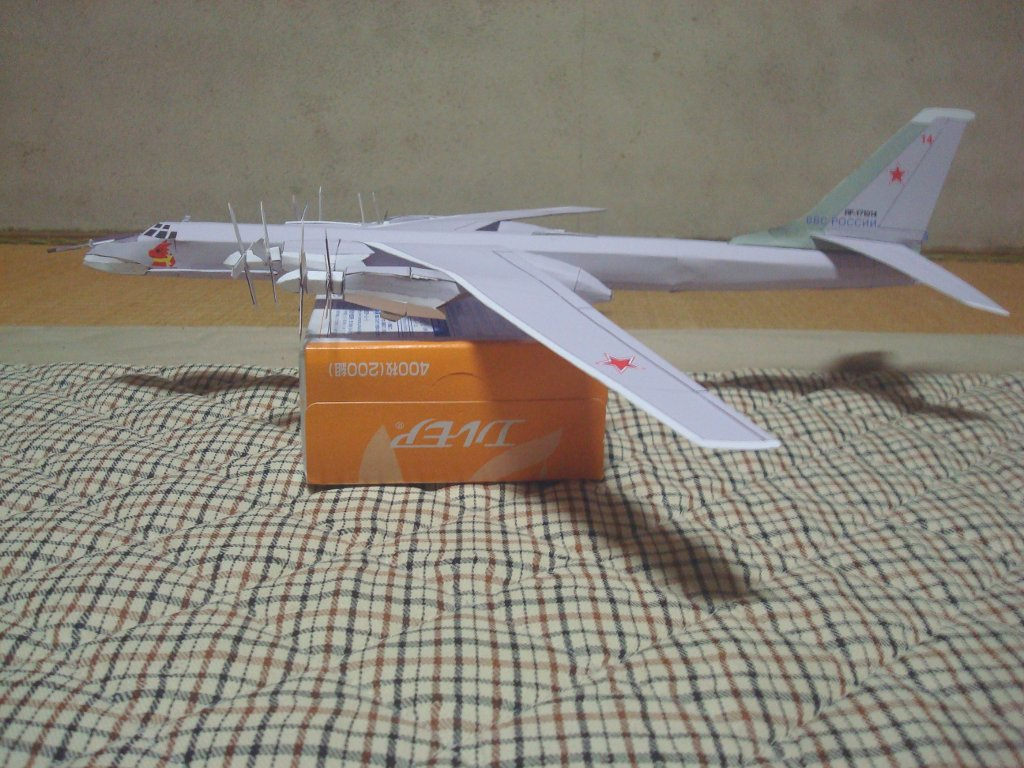 Tu-95_Bear_side.jpg