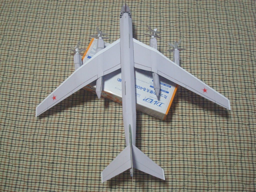 Tu-95_Bear_top.jpg