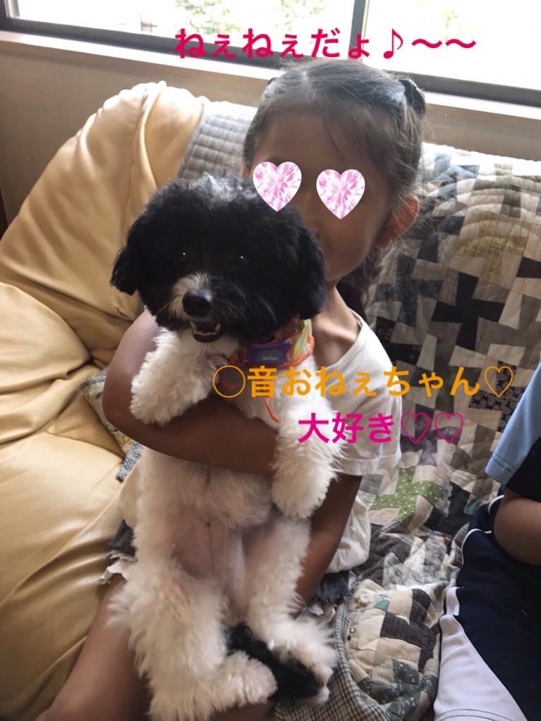 fc2blog_20171003224052942.jpg