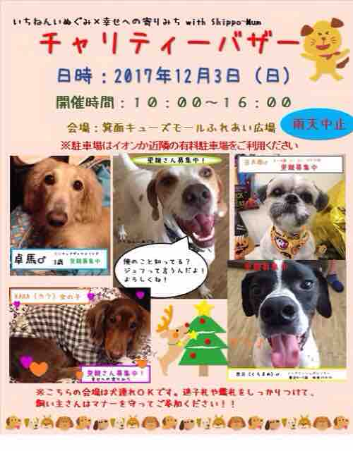 fc2blog_201711302213367a2.jpg