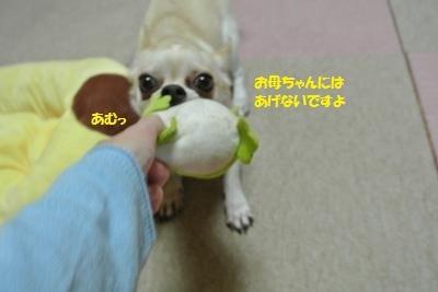 DSC_7345_convert_20171115094842.jpg