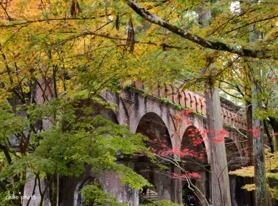 photo-756 秋の京都にて 1-3