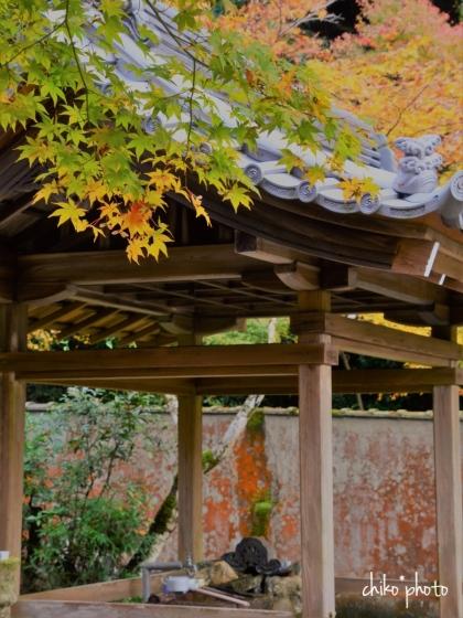 photo-759 秋の京都にて 4-2