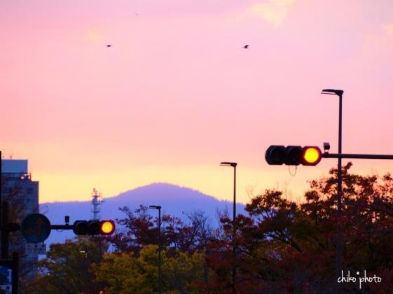 photo-761 秋の京都にて 6-2