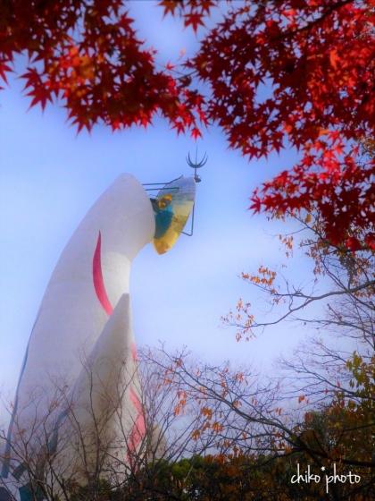 photo-769 秋の万博公園にて 7