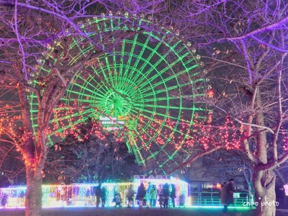 photo-770 万博記念公園イルミナイト1