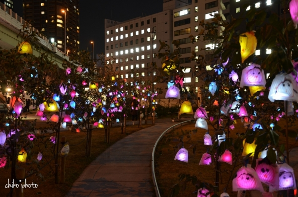 photo-777 大阪光の饗宴 ひかりの実_1