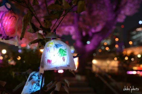 photo-777 大阪光の饗宴 ひかりの実_3