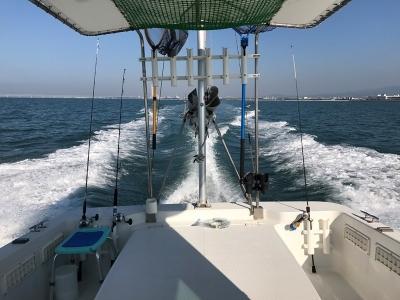 海上調査1