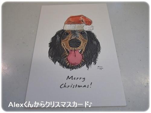 Alexくんのクリスマスカード