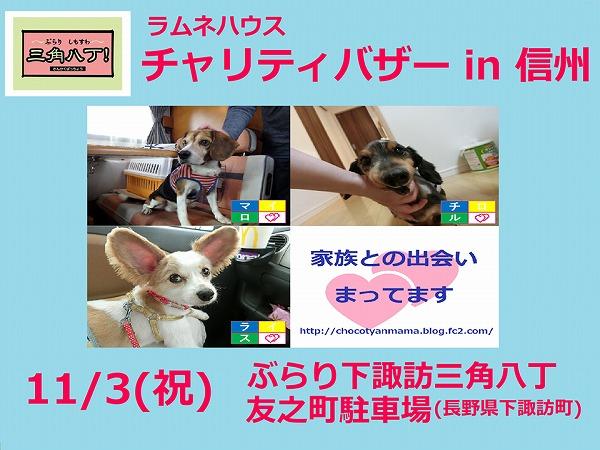 バザー広告in信州