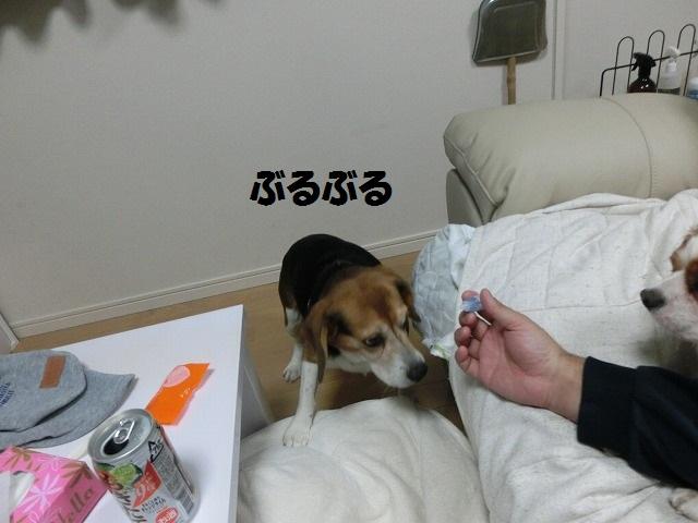 目薬事情 004
