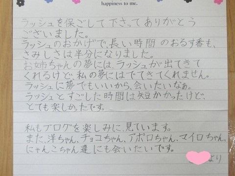 キジ太郎リビングデビュー 020