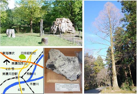 昭和村マップ