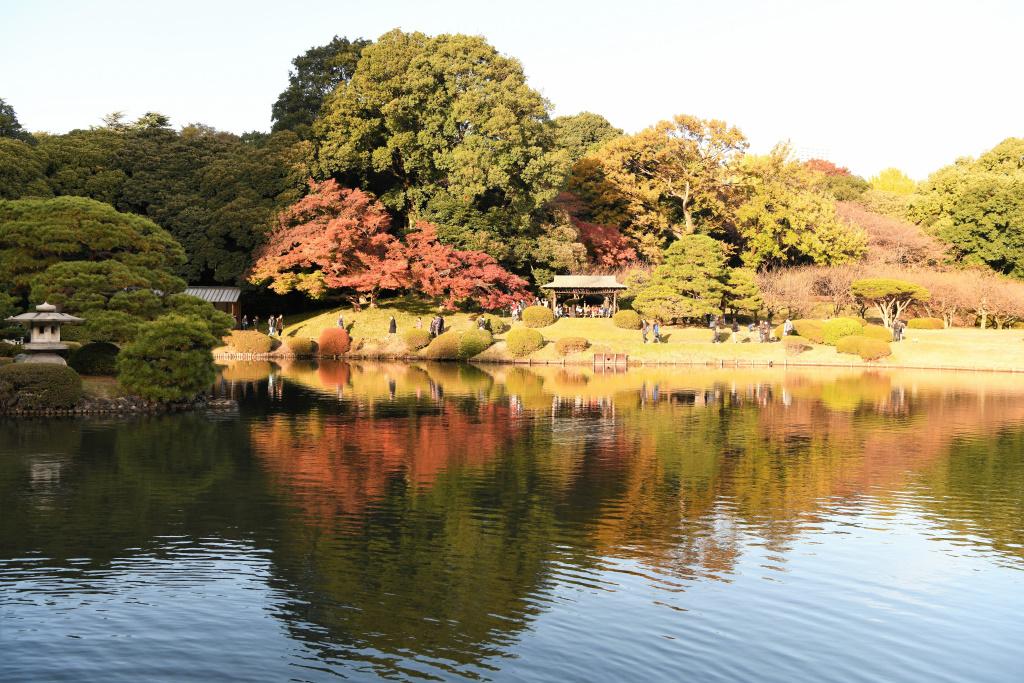 池面に映える紅葉