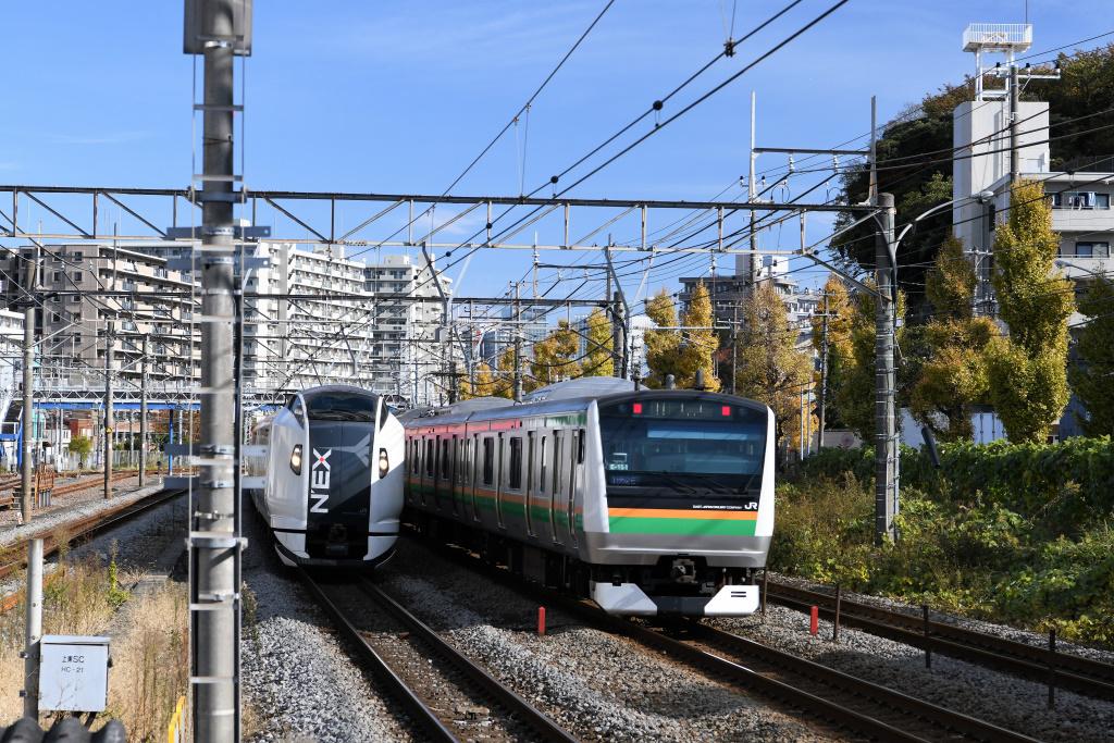 下りNEX & 東海道線普通