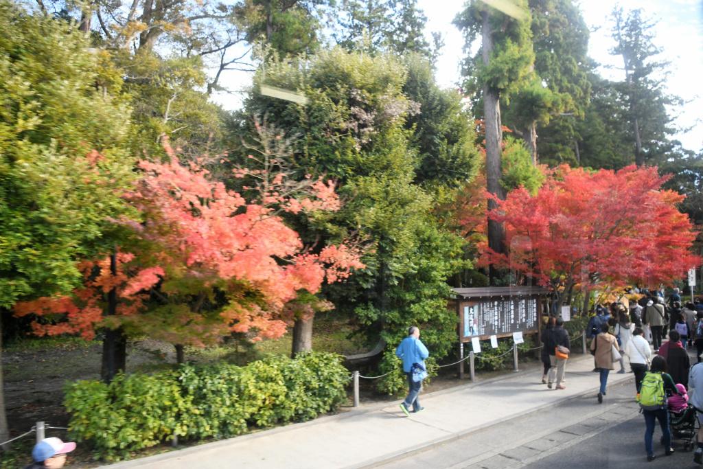円覚寺前 1