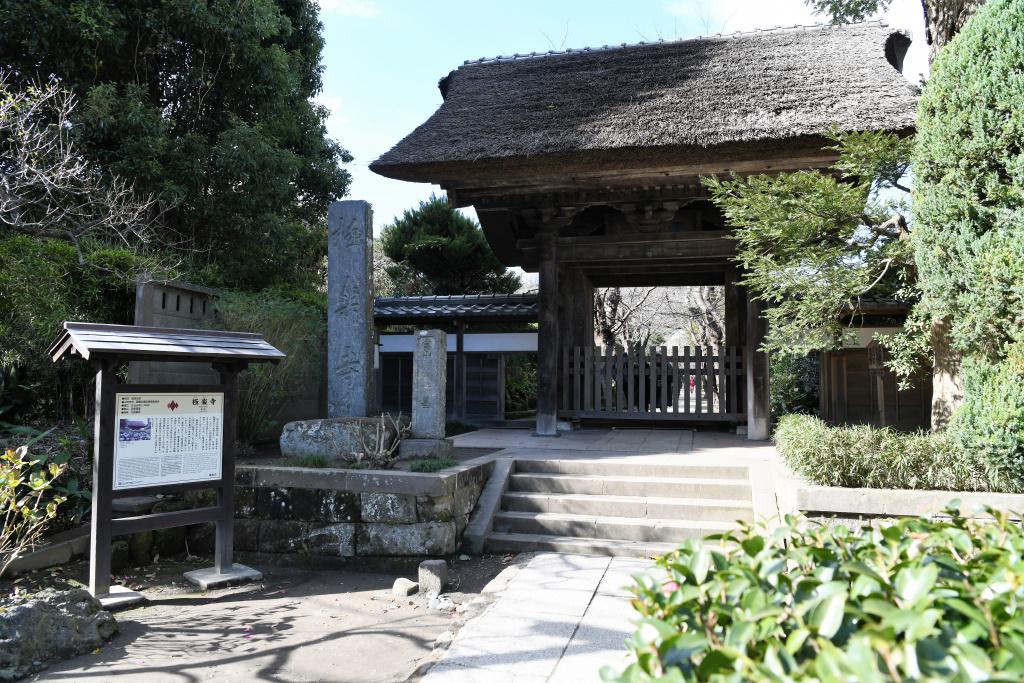 極楽寺 山門