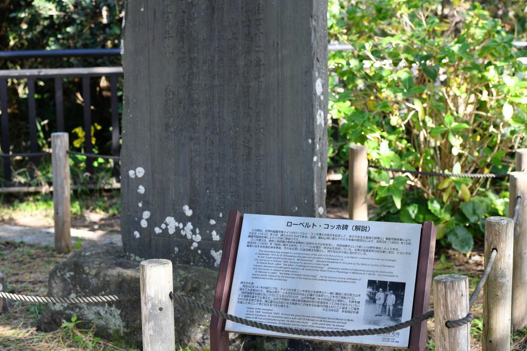 ロベルト コッホの記念碑