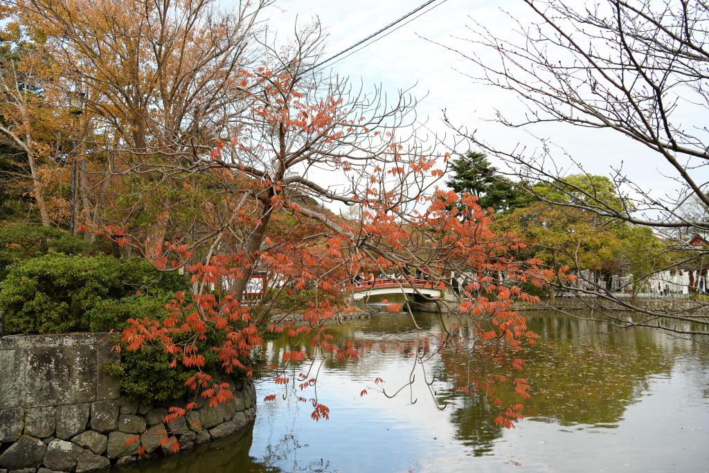 源氏池の紅葉
