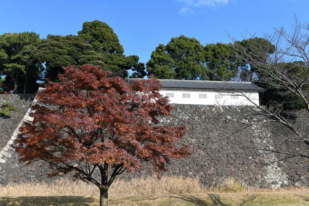 富士見多門櫓 1