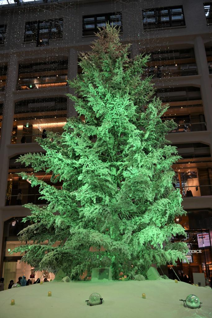 KITTE クリスマスツリー イルミネーション 1