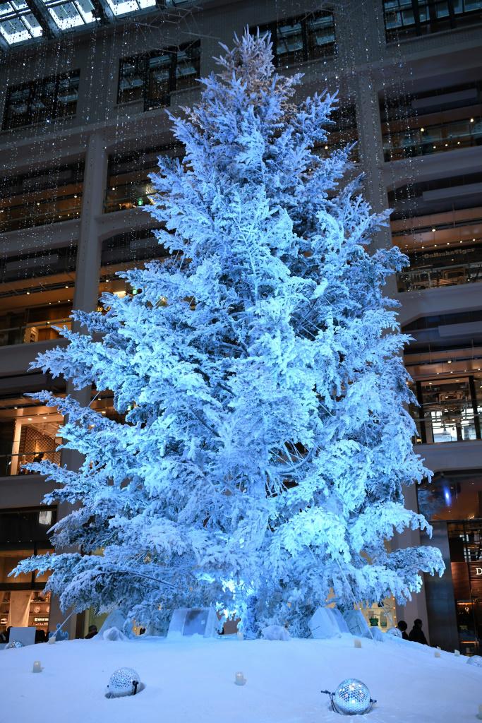 KITTE クリスマスツリー イルミネーション 2