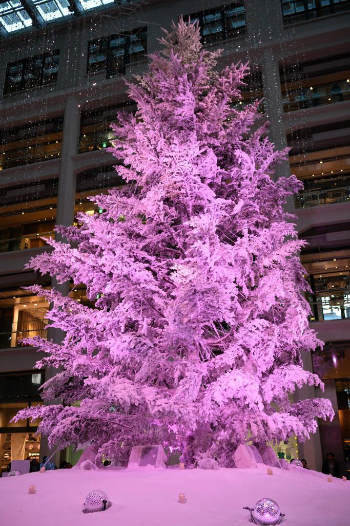 KITTE クリスマスツリー イルミネーション 3