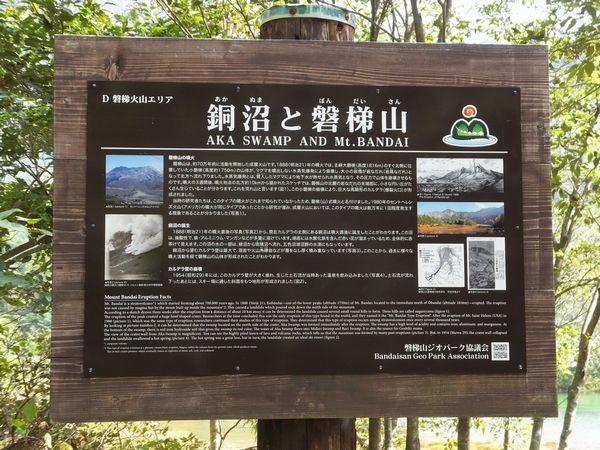 2017happoudai-akanuma16-web600.jpg