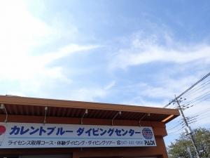 白井市ダイビング (8)