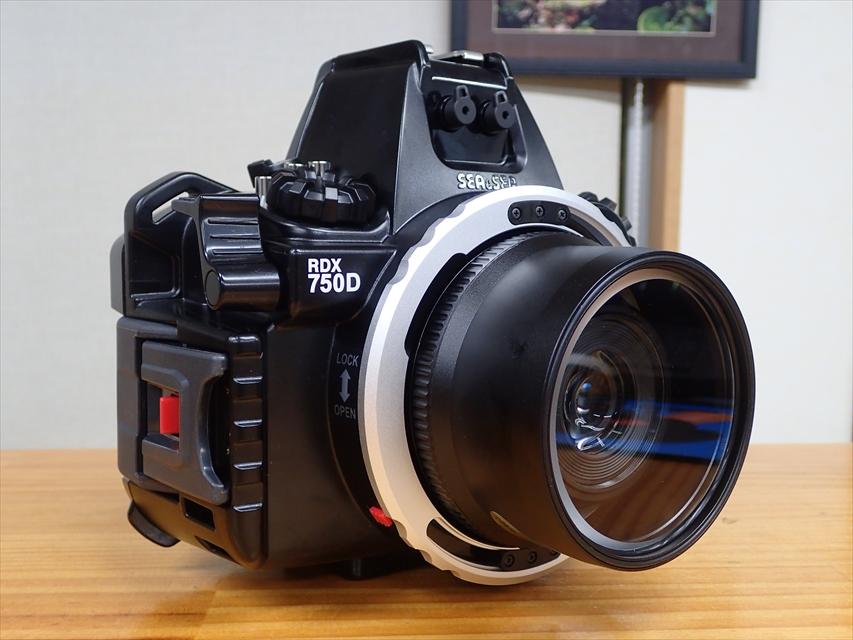 PC050534R.jpg