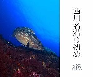 nishikawana-shinnenkai.jpg