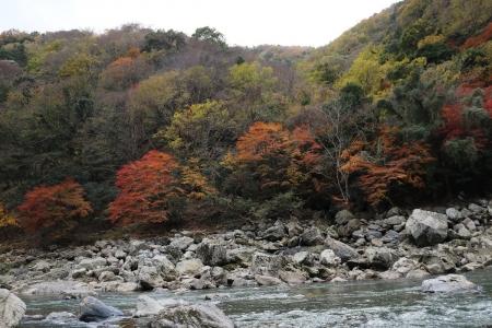 保津川下り(4)