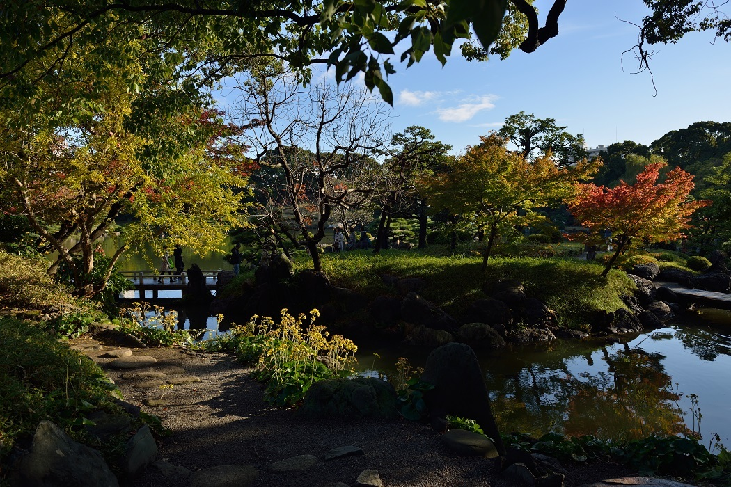 秋の清澄庭園そぞろ歩き