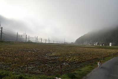 171026稲刈り (1)