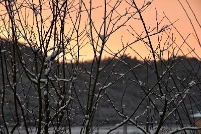 171214雪の朝 (3)