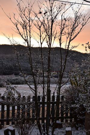171214雪の朝 (12)