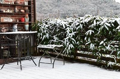 171214雪の朝 (4)