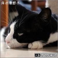dai20171120_banner.jpg