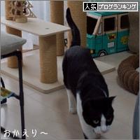 dai20171214_banner.jpg