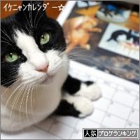 dai20171226_banner.jpg