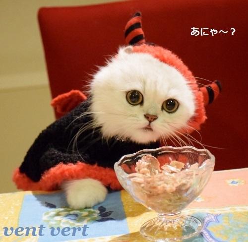 ハロ食事5